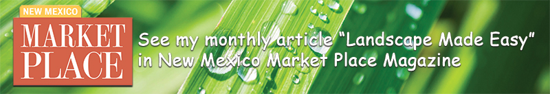 Dooley Articles in New Mexico Marketplace Magazine