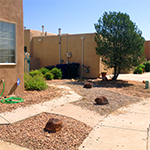 Front Yard Before Aug 2015